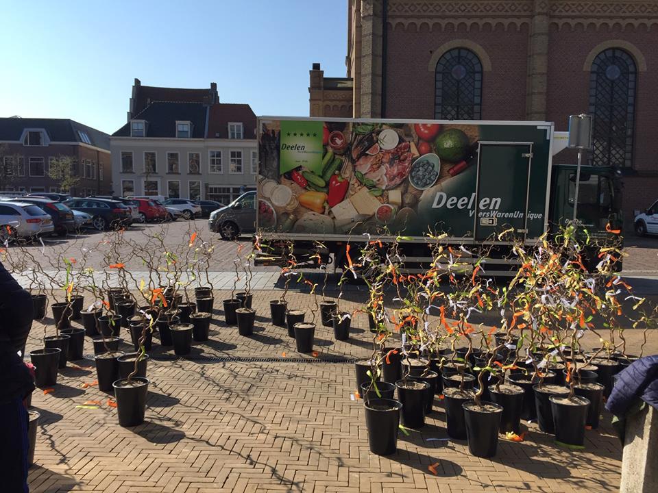 Binnenstad zet de bloemetjes zaterdag buiten