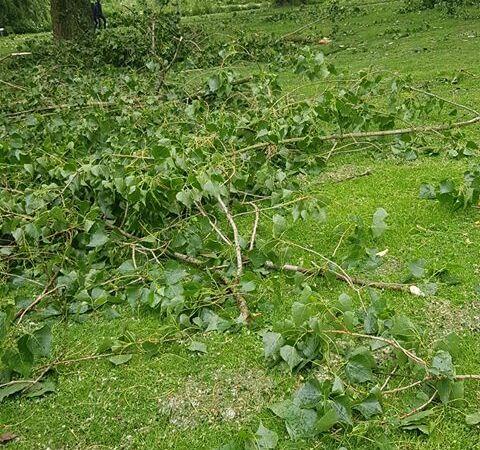 Stormschade in Gijs van Andelpark